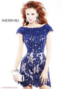 sherrihill2941